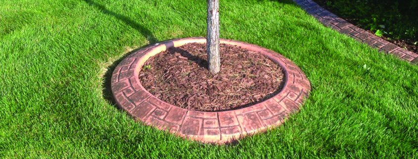 Concrete landscape curbing for tree rings.