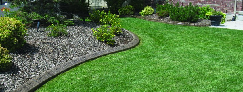 Decorative landscape borders help keep weeds out of beds.